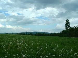 Cultivate Crops, Raising Critters On A Maine Farm
