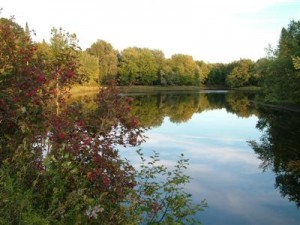Maine Rivers To Canoe, Kayak Can Be Like Glass Smooth In The Early Morning Hours.