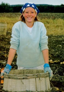 Picking Maine Potatoes..Dusty, Hot Sun, Long Days But Part Of Growing Up.