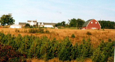 Growing Your Own Maine Food Is Becoming Popular For Fun, Survival.