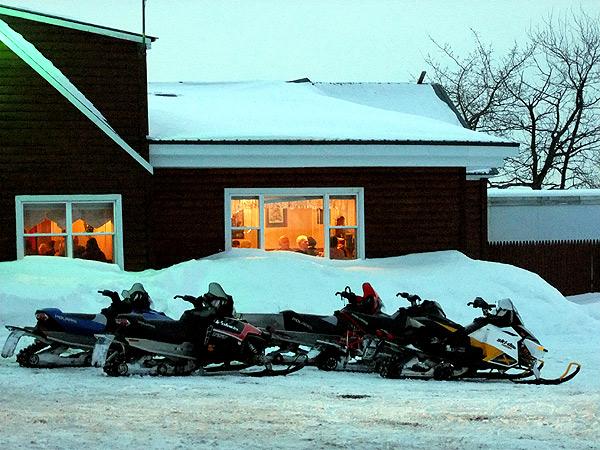 No Polar Bears, No Hibernation For Mainers.