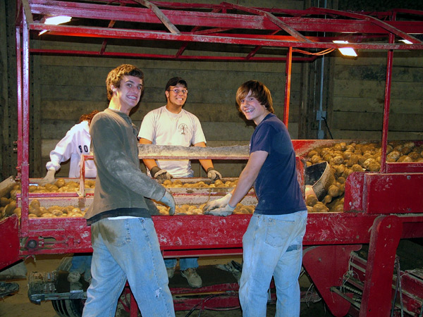 Maine Potato Harvest Teaches Work Ethic.