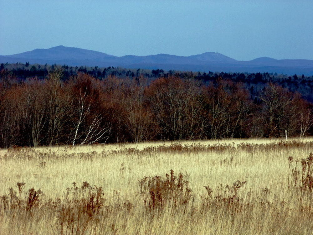 Colors Of Maine, The Fewer Can Be Better.