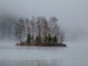 Maine Lake Island, Explore The Shores.