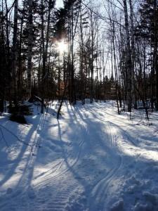 Maine Snow Sled Trail