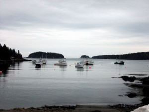 Maine Harbor Scene In Cutler ME