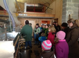 Spring Break Maine Maple Syrup Sap Operations.