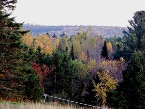 Slow Color Change In Maine Fall Weather