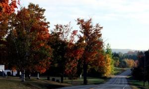 Maine Fall Colors, Are You A Leaf Peeker.