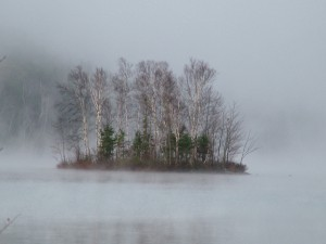 Maine Island In Foggy, Mist.