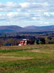 Maine Fall Harvest Photo In Aroostook County