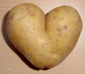 Maine Potate Heart Shaped Special