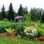 Maine Gardens