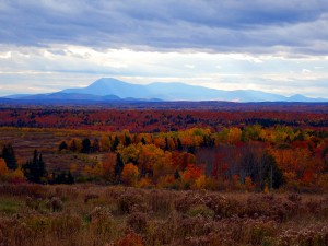 Maine Is Wide Open Space, Colors.