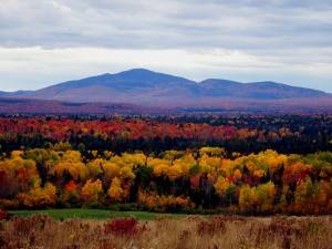 Maine Fall Foliage Colors.