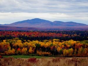 Maine Fall Foliage Colors.