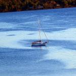 Maine Ocean Sailing.