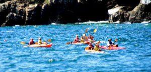 Sea Kayking In Bar Harbor Miane