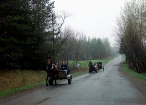 Amnish Horse And Buggies Transport the Communities On Open Roads.