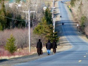 amish in maine photo