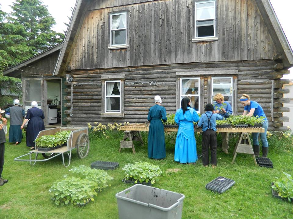 amish farming land in maine
