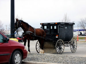 amish farm horse carriages