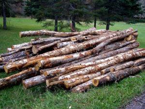 maine winter wood burning