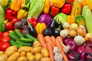 vegetable gardens in maine