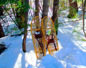 bear paw snow shoes me photo