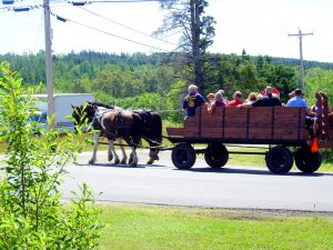 horse drawn wagon rides in maine tours photo