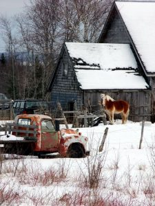 winter farmsteading scene photo