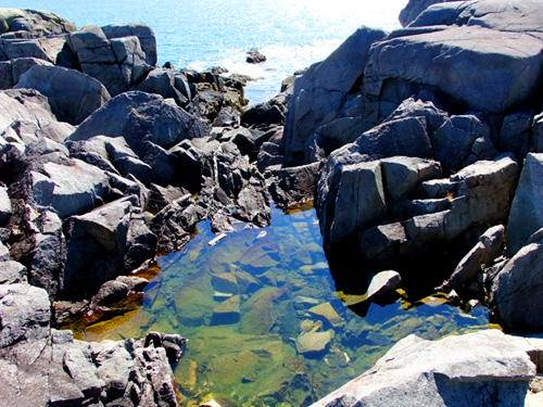 Water pools on a Maine coast!