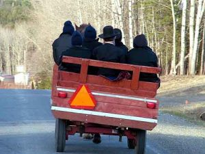 amish wagon heading to church