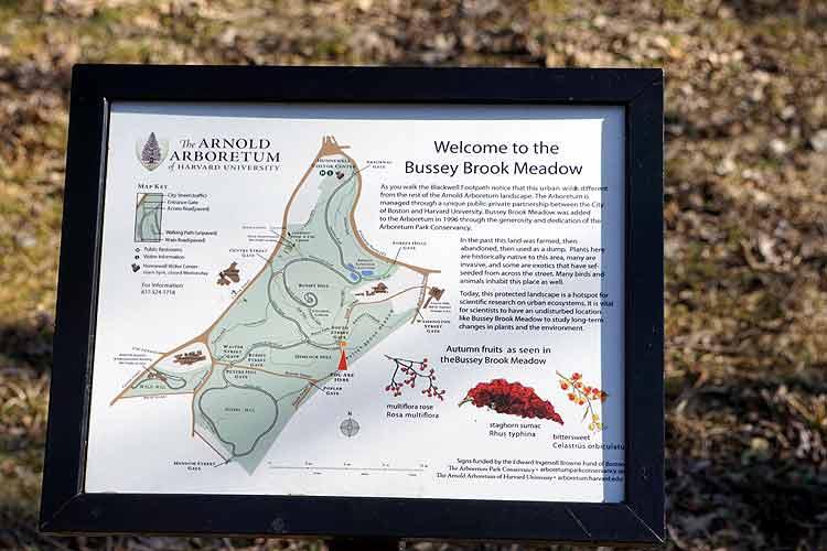 arboretum preserve