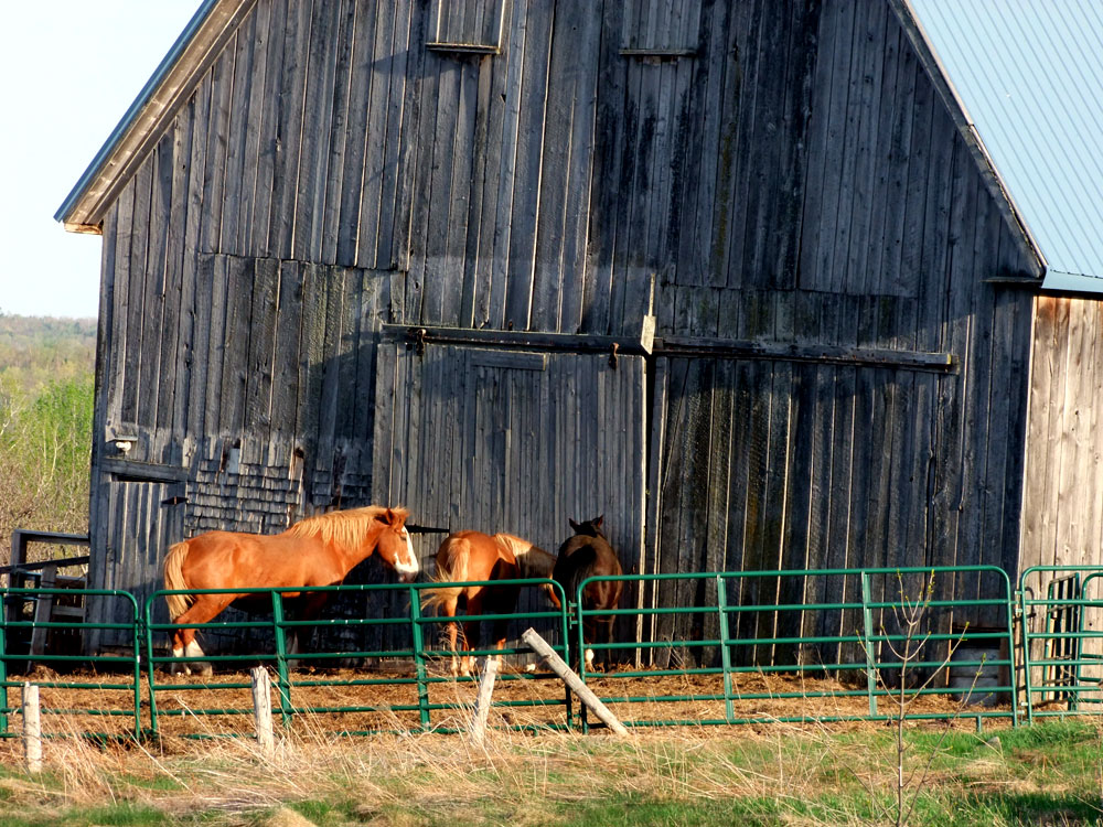 barns in maine