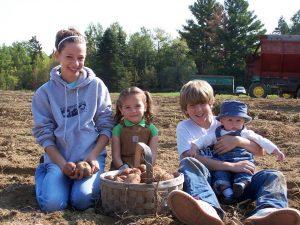farm crews in potato field