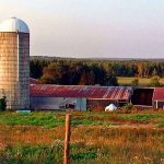farms baked beans suppers maine