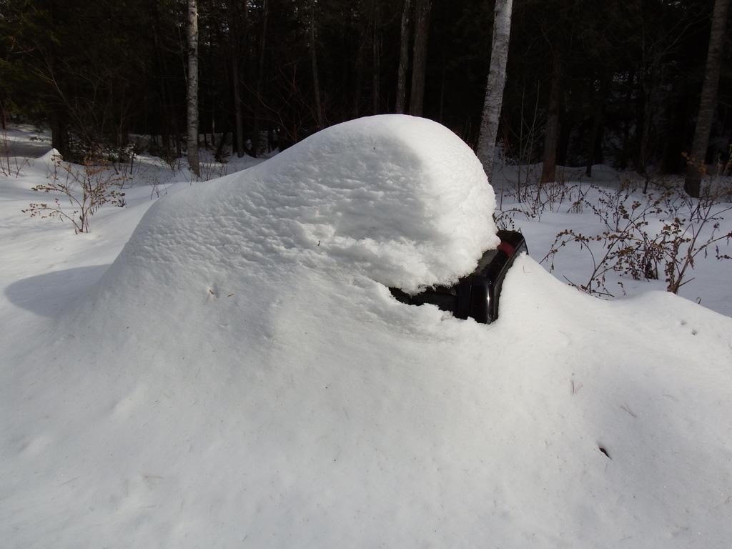 parked car under snow