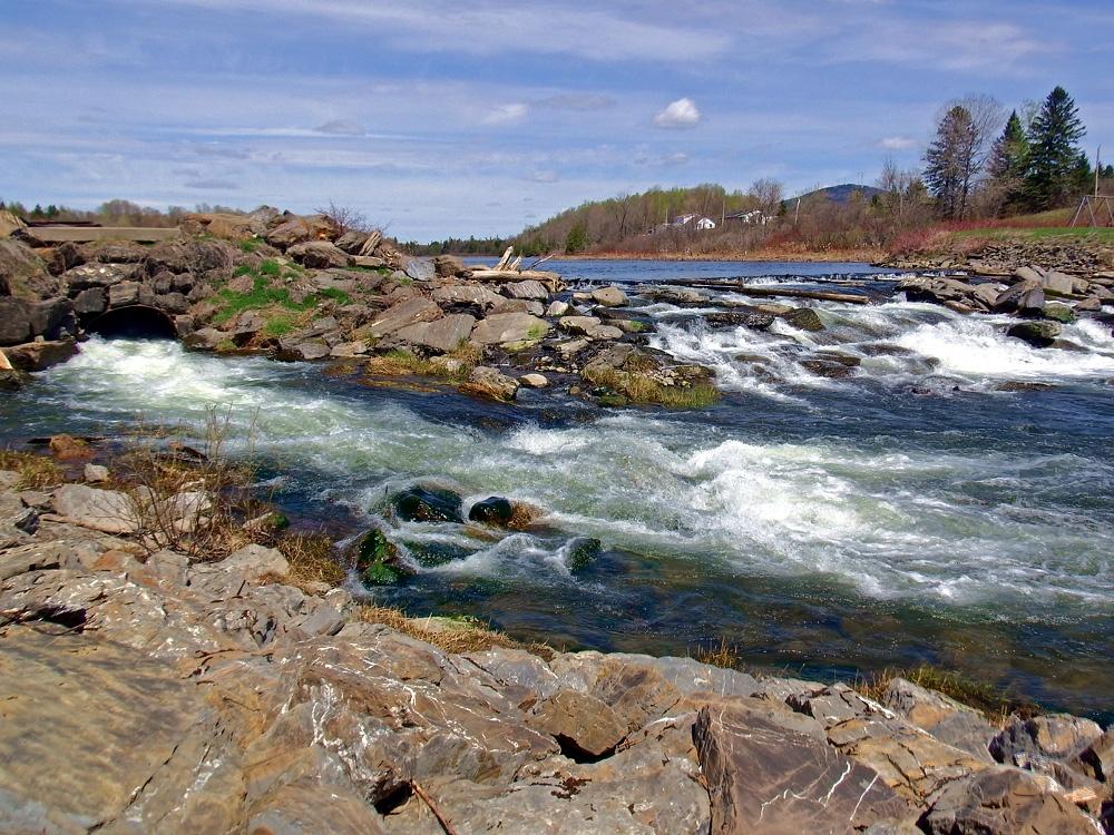 Maine fishing stream
