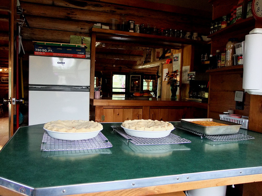 home made maine pies
