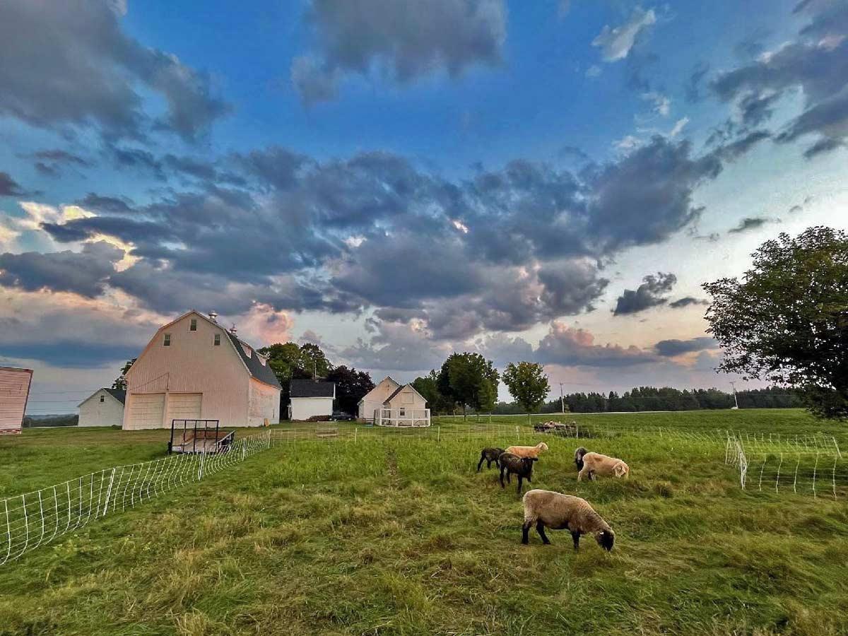 mooers farm in houlton me